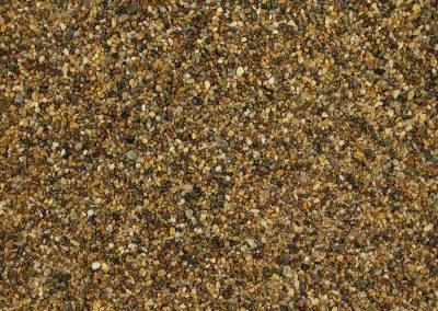 brittany-bronze-1-3mm-dried-w04